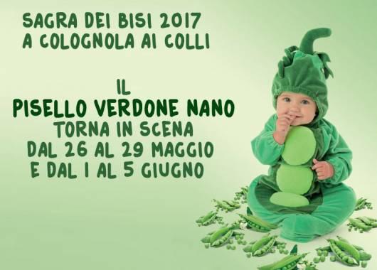 Sagra dei bisi 2017 Colognola ai Colli, il Pisello Verdone Nano torna in scena!