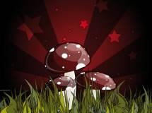 Verdure di stagione: l'autunno dedicato ai funghi